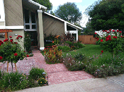Complex landscaping thriving thanks to our San Jose sprinkler repair team